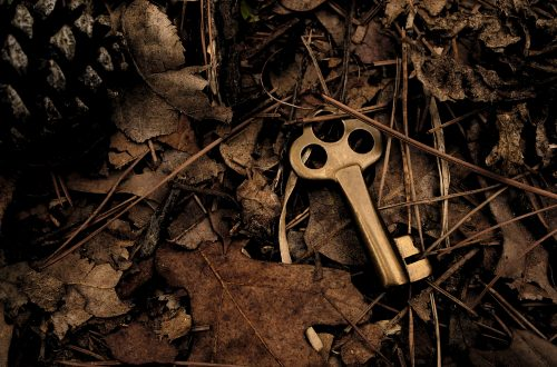 useless a key in the woods on the ground, old fashion style with dark brown and red leaves