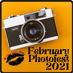 February Photofest 2021 Orange square with picture of a camera and picture of black lips under